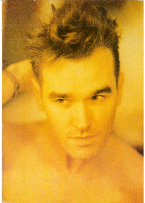 Morrissey without T-shirt orange colour Postcard